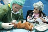 Gyógyító bocsok: kis orvosok a nagy félelem leküzdéséért