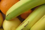 Vitamindús ételek télire