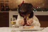 Állatok az ünnepi asztalnál - görbe tükör?