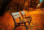 10 szuper őszi program október első hétvégéjére