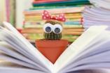 10 jótanács, hogyan neveljen a gyerekből olvasót