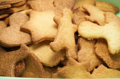 .cookie-1769879_1920