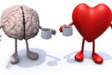 Érzelmi intelligenciáról és empátiáról, röviden