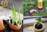 Okos tippek kertészeknek