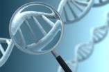 Új genetikai tesztvizsgálat várandósoknak