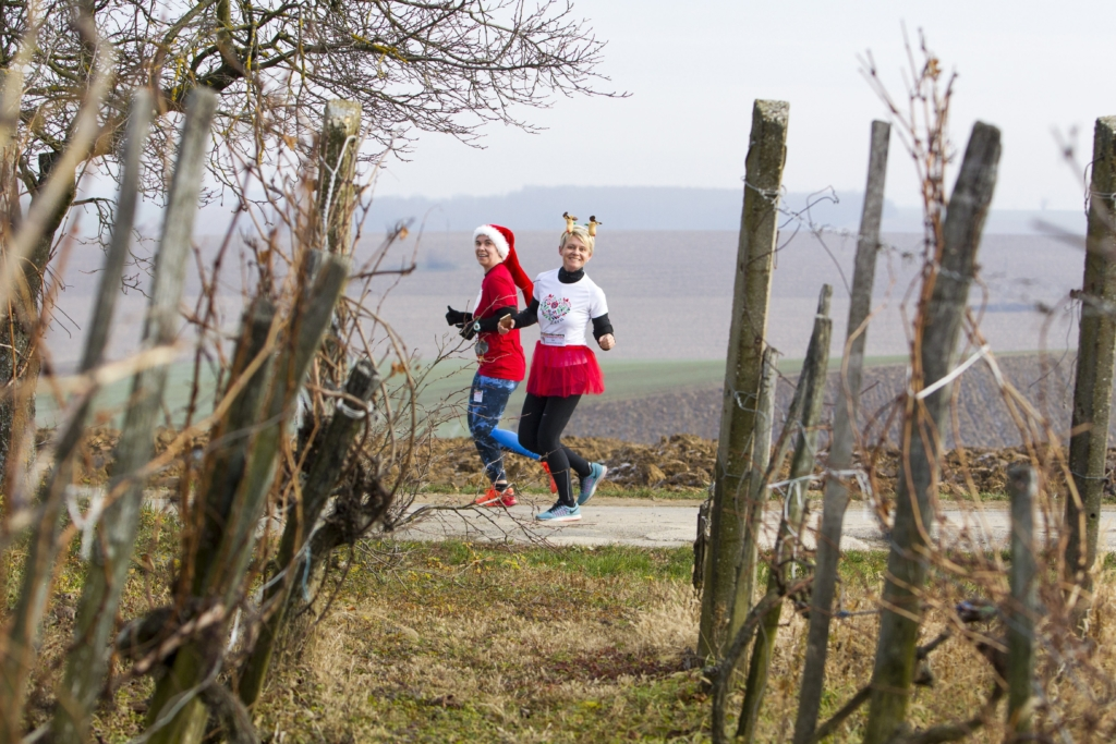 Pacsa, 2016. december 4. A Mikulás-futás résztvevõi a Zala megyei Pacsán, a szõlõhegyen 2016. december 4-én. MTI Fotó: Varga György