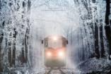 Lélegzetelállító magyar fotók a téli erdőről - Gyermekvasúttal