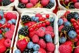 Válassz egy gyümölcsöt és megmondjuk, milyen vagy valójában