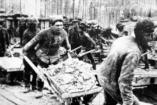Aki túlélte a saját halálát – Kohlmayer János története