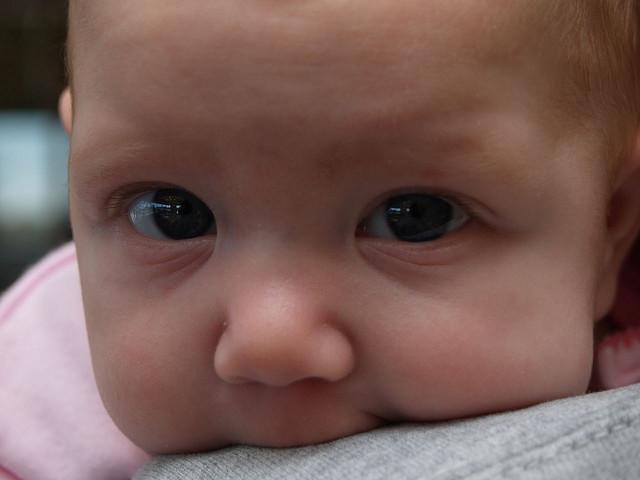A kisbabáktól sem áll távol a logika