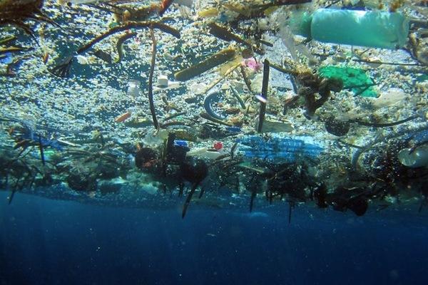 2050-re több műanyag lesz az óceánban, mint hal