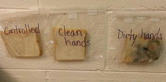 Zseniális tanári demonstráció a kézmosás fontosságáról
