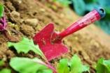 5 tanács a biztonságos otthoni barkácsoláshoz és kertészkedéshez