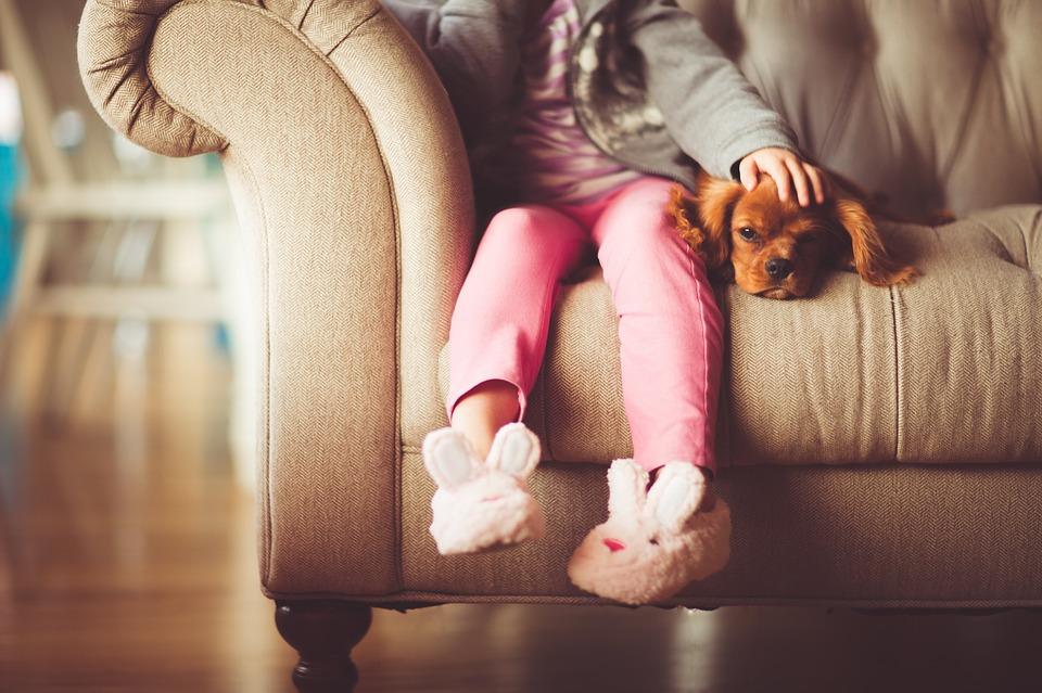 Állattartás kisgyerekes szülőként - mikor érdemes belevágni?