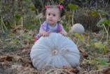 Ezért olyan különlegesek a szeptemberi babák