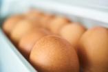 Egy átlag család évi ötvenezer forintnyi élelmiszert dob a szemétbe